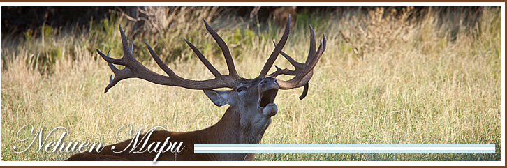 Big Game Hunting Ranch, La Pampa, Argentina